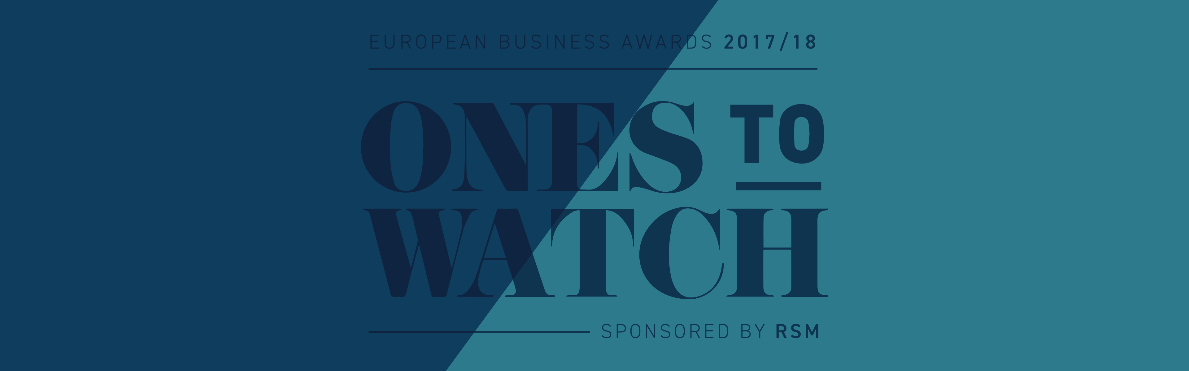 europe business award eleks