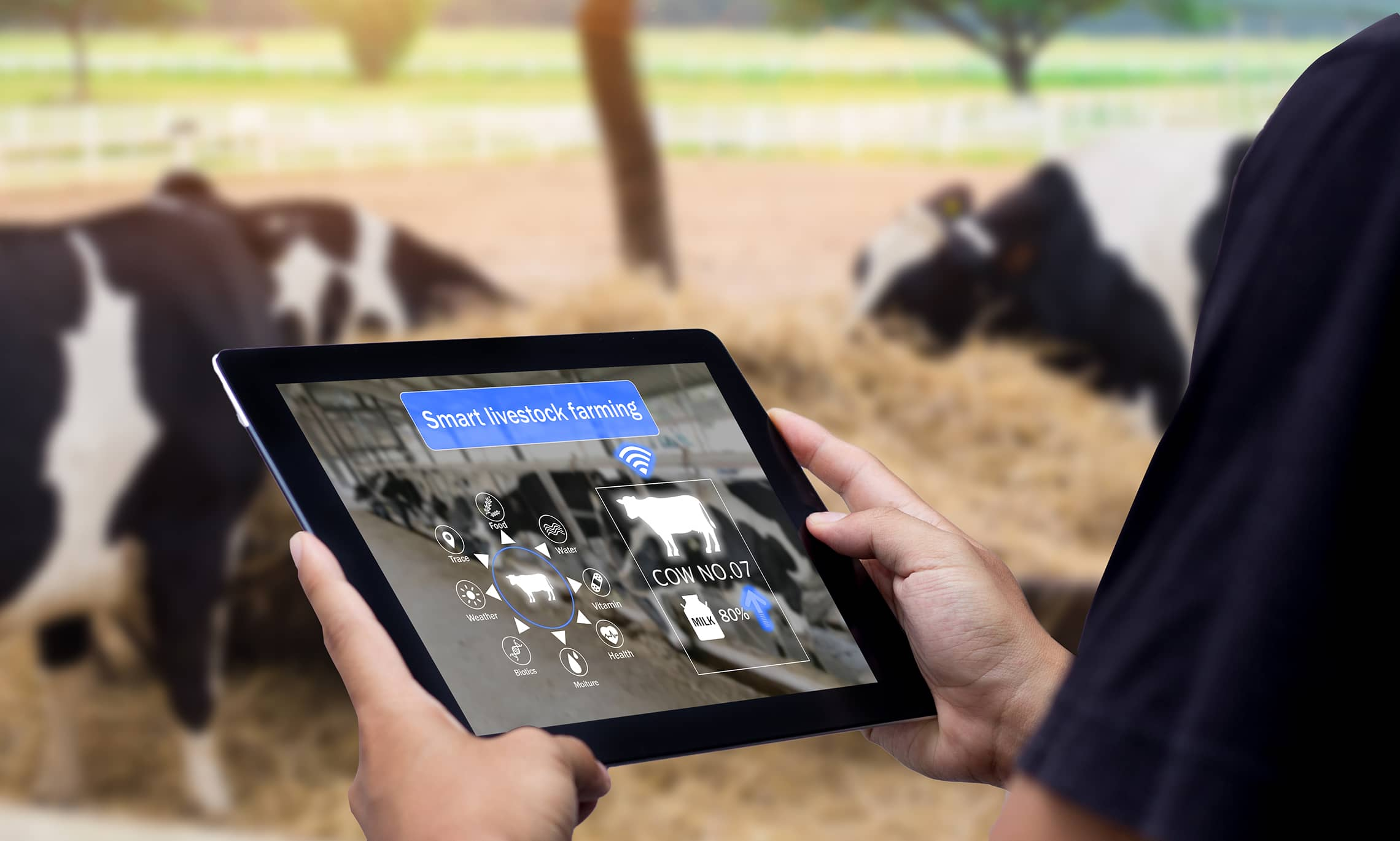connected farm livestock monitoring system